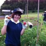 スタッフ農業体験(その2)