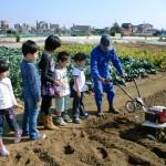 農作業体験に参加する子ども達